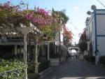 Puerto de Mogan – Was für's Auge