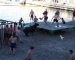 Bous a la Mar Denia, Spanien. Fiesta Santisima Sangre