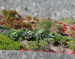 Kleiner Park in Santa Lucia